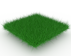3D asset low-poly PBR Grass