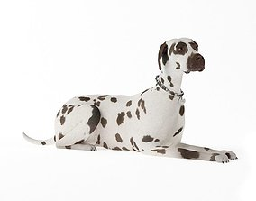 3D model Adult Dog Laying Down