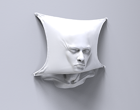3D print model Head behind the drape sculpture