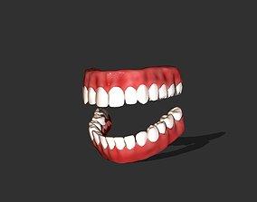 3D model Teeth human