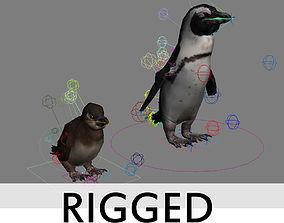 Penguins Rigged 3D asset