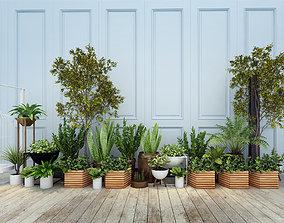 Plants 3D model flower botanical