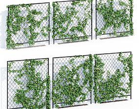Ivy wall three 3D model