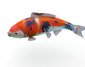3D- Koi Fish 3 Animiert animated