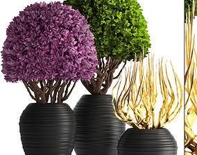 3D ornamental tree