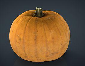 Realistic Pumpkin 3D asset