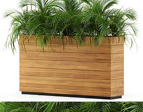Plants collection 462 3D