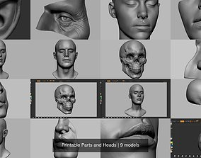 3D zbrush Printable Parts and Heads