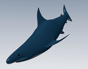 3D model game-ready Shark
