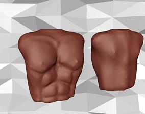 3D model Male Torso 2