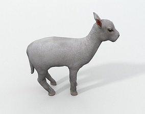 3D asset Little Goat