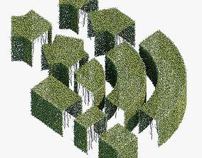 3D Hedge 600x800