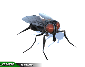 Low-Poly Housefly Insect Rigged Animated 3d model animated