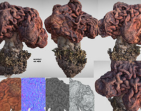 Gyromitra brain mushroom lorchel fausse morille 3D 1