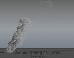 Smoke Rising 08 - VDB 3D model