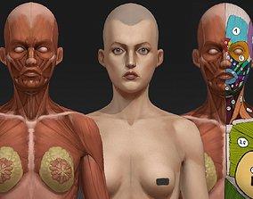 Woman anatomy study 3D asset