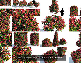 Photinia fraseri Little Red Robin collection 3D