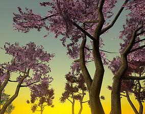 Wax Cherry Trees 3D model