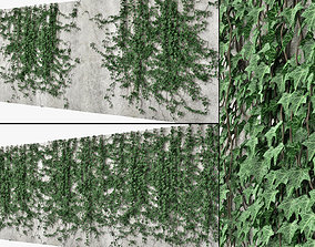 Ivy wall 10 nature 3D model