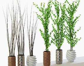 Set of plants in pots 3D model