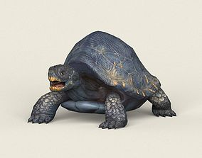 3D asset Game Ready Mountain Turtle