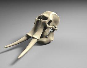 3D print model Elephant Skull