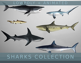 3D Lowpoly Animated Shark Collection