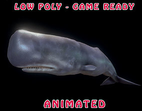 3D model Low poly Spermwhale Animated - Game Ready