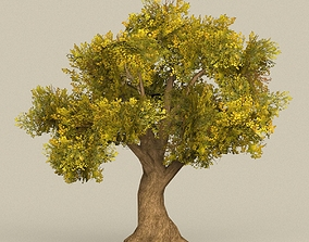 3D asset Game Ready Tree 14