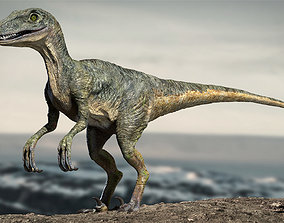 animated Velociraptor Animated Rigged 3D model