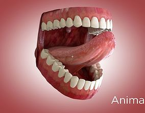 Teeth and Mouth 3D animated