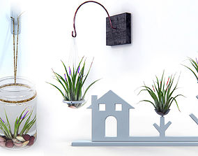 3D model Air Plants Pack
