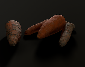 Carrot photogrammetry - Game ready asset realtime