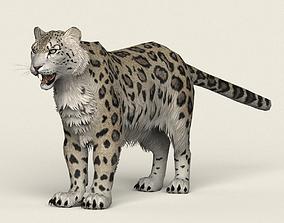 3D asset Game Ready Snow Leopard