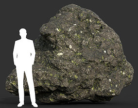 3D asset Low poly Damaged Lichen Rock 03 190907