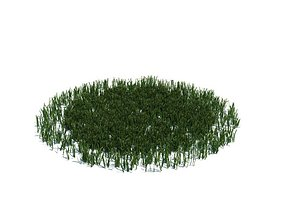 3D model Grass Circle