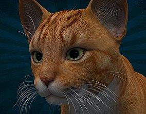 ANML-004 Cat 3D