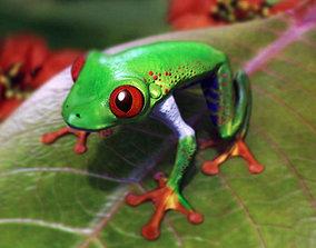 3D model Frog red eyes
