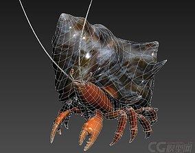 3D model Hermit crabs sand crabs hand crabs sea animals