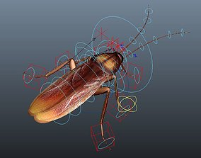 rigged cockroach 3d maya rigged