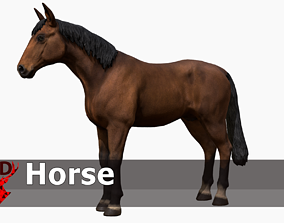3D asset Horse realistic