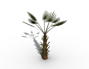 palm tree wire 3D
