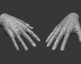 Old Human Hand 3D model