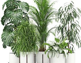 Plants collection 354 3D