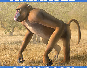 animated Baboon 3D Model - Animated