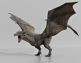 Dragon wyvern 3D asset animated