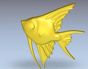 3D Model of Fish Angelfish