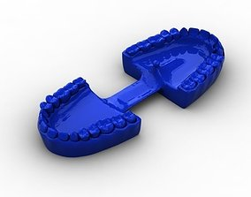 Mouth Teeth Gums 3D printable model