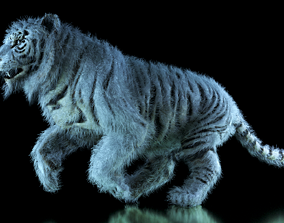 Raja The White Bengal Tiger 3D Model animated