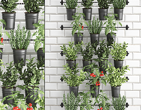 Decorative plants for the kitchen on railing 3802 3D